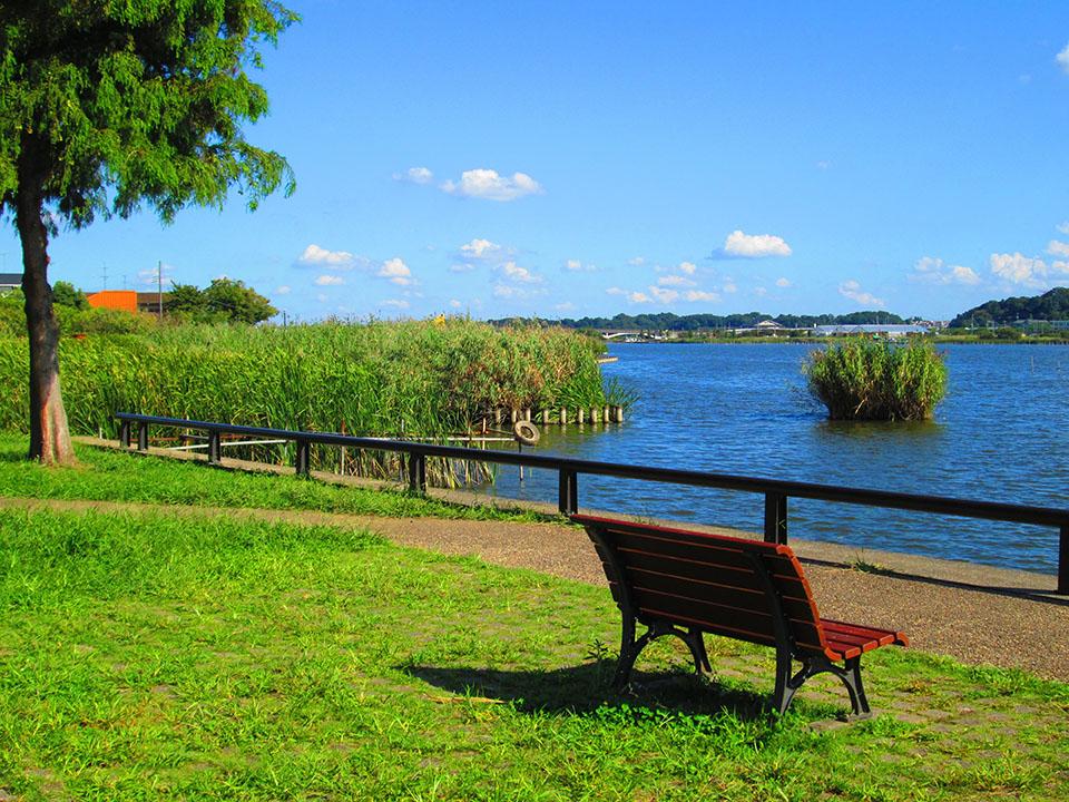 我孫子市にある手賀沼公園の画像