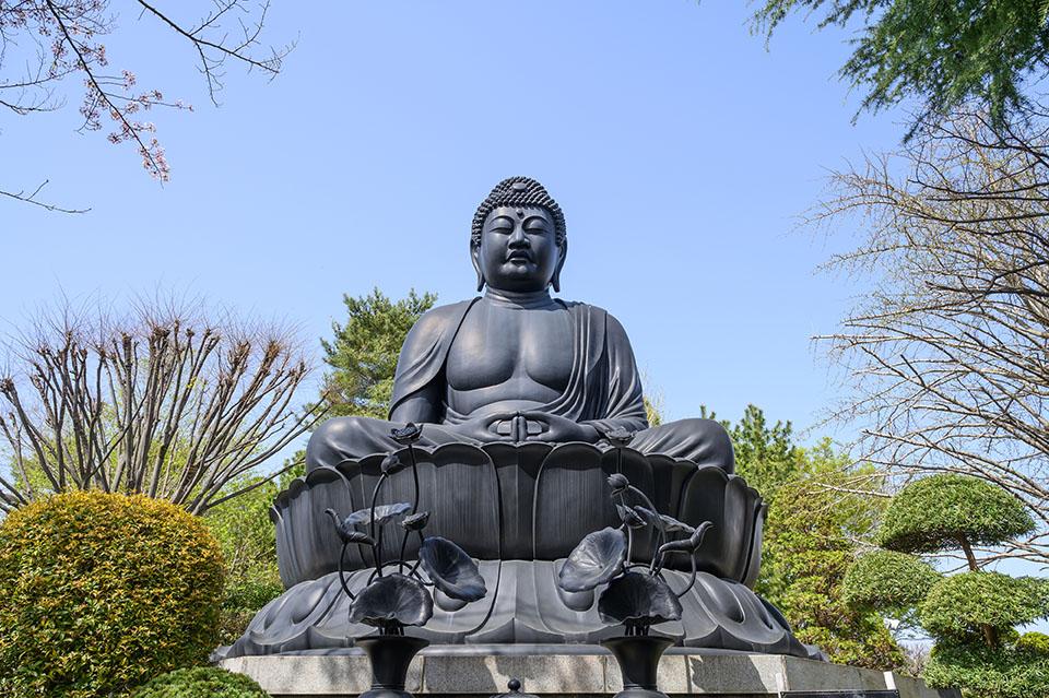 板橋区にある東京大仏乗蓮寺画像