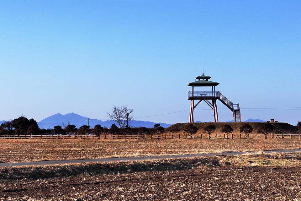 美浦村にある大須賀津農村公園の展望台画像