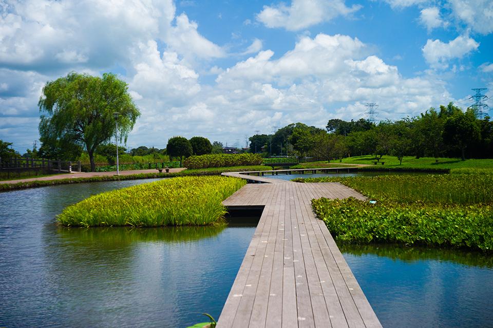 利根町にある利根親水公園画像